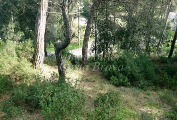 Plot of land with grown trees and little sea views for sale in  Begur