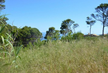 Plot with seaviews  for sale  Aigua Freda, Begur