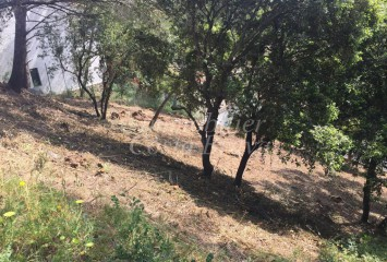 Building plot with trees for sale in Begur, Sa Riera, only 300 m to the beach
