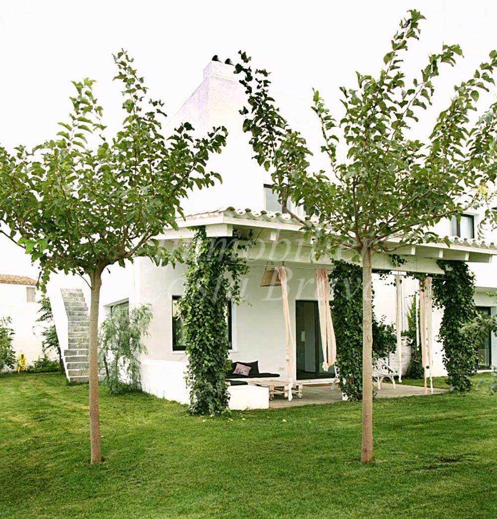 jolie maison moderne en ensoleill e vendre pals. Black Bedroom Furniture Sets. Home Design Ideas